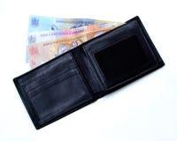 πορτοφόλι 2 Στοκ φωτογραφίες με δικαίωμα ελεύθερης χρήσης