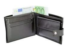 Πορτοφόλι και ευρο- τραπεζογραμμάτιο 100 Στοκ εικόνα με δικαίωμα ελεύθερης χρήσης
