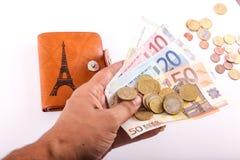 Πορτοφόλι και ευρώ δέρματος Στοκ Εικόνα