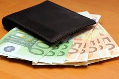 Πορτοφόλι και ευρώ Στοκ Εικόνα
