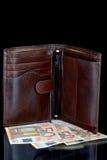 Πορτοφόλι και ευρώ Στοκ εικόνα με δικαίωμα ελεύθερης χρήσης