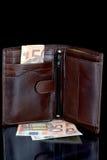 Πορτοφόλι και ευρώ Στοκ εικόνες με δικαίωμα ελεύθερης χρήσης