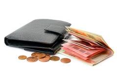 Πορτοφόλι και ευρώ Στοκ Φωτογραφία