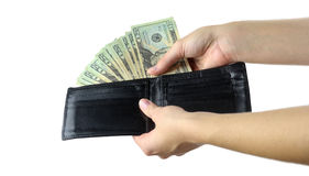 Πορτοφόλι με τα μετρητά Στοκ Εικόνες