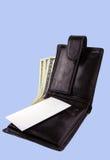 Πορτοφόλι με τα δολάρια, τη χρυσή κάρτα και την καθαρή επαγγελματική κάρτα Θέση FO Στοκ Εικόνες