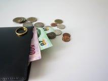 Πορτοφόλι με τα χρήματα και τα νομίσματα Στοκ Εικόνες