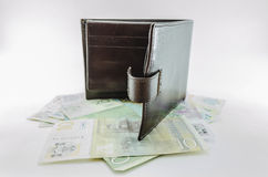πορτοφόλι στοκ εικόνα με δικαίωμα ελεύθερης χρήσης