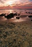 πορτρέτα του Όρεγκον ακτών στοκ εικόνες