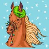 Πορτρέτο ένα άλογο Στοκ εικόνες με δικαίωμα ελεύθερης χρήσης