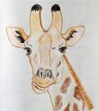 Πορτρέτο αστείο giraffe που σύρεται με τα χρωματισμένα μολύβια στοκ εικόνα με δικαίωμα ελεύθερης χρήσης