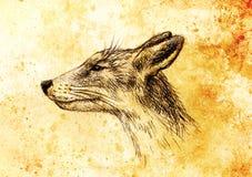 Πορτρέτο αλεπούδων, μολύβι που επισύρουν την προσοχή σε χαρτί και εκλεκτής ποιότητας επίδραση Στοκ Εικόνες