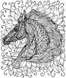 Πορτρέτο αλόγων Στοκ Εικόνα