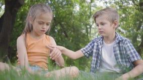 Πορτρέτο δύο αστεία παιδιά που κάθονται στη χλόη στο παιχνίδι πάρκων Το αγόρι που παίζει με ένα ζωύφιο, κορίτσι που προσπαθεί να  απόθεμα βίντεο