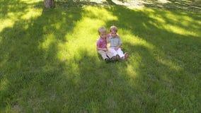 Πορτρέτο δύο εύθυμων αγοριών πέντε χρονών στο πάρκο στην πράσινη χλόη απόθεμα βίντεο