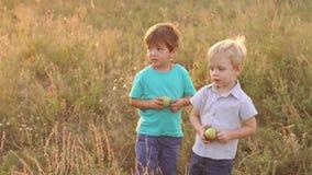 Πορτρέτο δύο μικρών παιδιών με τα μήλα στον τομέα απόθεμα βίντεο