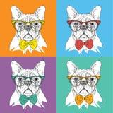 Πορτρέτο εικόνας του σκυλιού στο λαιμοδέτη και με τα γυαλιά Λαϊκή διανυσματική απεικόνιση ύφους τέχνης Στοκ Εικόνες