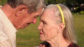Πορτρέτο ενός ηλικιωμένου ζεύγους στο ηλιόλουστο πάρκο απόθεμα βίντεο