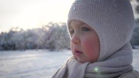 Πορτρέτο ενός μικρού κοριτσιού που στέκεται στο χειμερινό πάρκο απόθεμα βίντεο