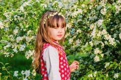 Πορτρέτο ενός μικρού κοριτσιού στον οπωρώνα της θερινής Apple Στοκ Φωτογραφίες