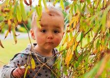Πορτρέτο ενός περίεργου μικρού κοριτσιού Στοκ Φωτογραφίες