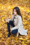 Πορτρέτο ενός όμορφου μικρού κοριτσιού brunette, πάρκο φθινοπώρου υπαίθρια στοκ φωτογραφία
