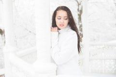 Πορτρέτο ενός όμορφου brunette υπαίθρια Στοκ φωτογραφίες με δικαίωμα ελεύθερης χρήσης