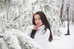 Πορτρέτο ενός όμορφου brunette υπαίθρια Στοκ Εικόνες