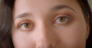 Πορτρέτο κινηματογραφήσεων σε πρώτο πλάνο του νέου αρκετά καυκάσιου θηλυκού προσώπου με τα μάτια που εξετάζουν τη κάμερα απόθεμα βίντεο