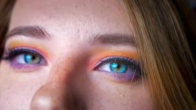 Πορτρέτο κινηματογραφήσεων σε πρώτο πλάνο του ξανθού θηλυκού με τα μπλε μάτια που κτυπούν στη κάμερα με τη ζωηρόχρωμη σύνθεση στο φιλμ μικρού μήκους