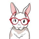 Πορτρέτο κουνελιών με τα κόκκινα γυαλιά που απομονώνεται το ήρεμο κουνέλι ανασκόπησης κάθεται το λευκό διανυσματική απεικόνιση