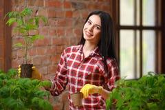Πορτρέτο μιας γοητευτικής νέας θηλυκής κηπουρικής Στοκ Εικόνες