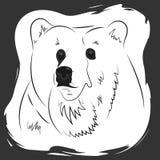 Πορτρέτο μιας μπλούζας αρκούδων, φανέλα, τυπωμένη ύλη τσαντών διανυσματική απεικόνιση