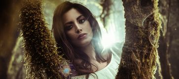 Πορτρέτο μιας όμορφης γυναικείας τοποθέτησης μεταξύ των δέντρων στοκ φωτογραφία με δικαίωμα ελεύθερης χρήσης