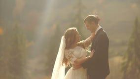 Πορτρέτο μισό-μήκους του αγαπώντας ζεύγους των newlyweds που απολαμβάνουν το ένα το άλλο και tenderly που αγκαλιάζουν στα χρυσά β απόθεμα βίντεο