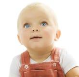 πορτρέτο μωρών Στοκ Φωτογραφία