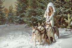 Πορτρέτο μόδας της όμορφης γυναίκας Στοκ εικόνα με δικαίωμα ελεύθερης χρήσης