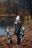 Πορτρέτο νέων κοριτσιών με τα δαλματικά σκυλιά της στοκ φωτογραφία