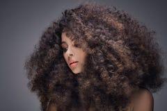 Πορτρέτο ομορφιάς του κοριτσιού με το afro στοκ φωτογραφία με δικαίωμα ελεύθερης χρήσης
