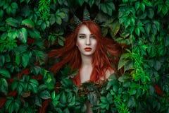 Πορτρέτο πριγκηπισσών νεραιδών στοκ εικόνες