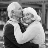 Πορτρέτο της ατελείωτης αγάπης Στοκ Εικόνες