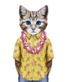 Πορτρέτο της γάτας στο θερινό πουκάμισο με της Χαβάης Lei ελεύθερη απεικόνιση δικαιώματος
