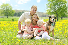 Πορτρέτο της ευτυχών οικογένειας και του σκυλιού στο λιβάδι λουλουδιών Στοκ εικόνες με δικαίωμα ελεύθερης χρήσης
