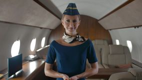 Πορτρέτο της νέας αεροσυνοδού μέσα της ιδιωτικής αεριωθούμενης καμπίνας απόθεμα βίντεο