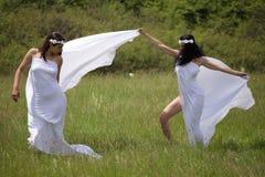 Πορτρέτο της προκλητικής γυναίκας δύο στη φύση στοκ εικόνες με δικαίωμα ελεύθερης χρήσης
