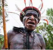 Πορτρέτο της φυλής της Dani όμορφα headdress φιαγμένα από φτερά Στοκ φωτογραφίες με δικαίωμα ελεύθερης χρήσης