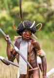 Πορτρέτο της φυλής της Dani όμορφα headdress φιαγμένα από φτερά Στοκ φωτογραφία με δικαίωμα ελεύθερης χρήσης