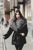 Πορτρέτο της όμορφης γυναίκας brunette στη γούνα που έχει τη διασκέδαση Στοκ Εικόνα