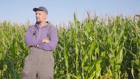 Πορτρέτο της Farmer cornfield Η Farmer, κλείνει επάνω του προσώπου στον τομέα καλαμποκιού φιλμ μικρού μήκους