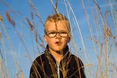 Πορτρέτο του αγοριού στον τομέα Στοκ εικόνα με δικαίωμα ελεύθερης χρήσης