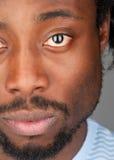 Πορτρέτο του ατόμου αφροαμερικάνων στοκ εικόνα με δικαίωμα ελεύθερης χρήσης